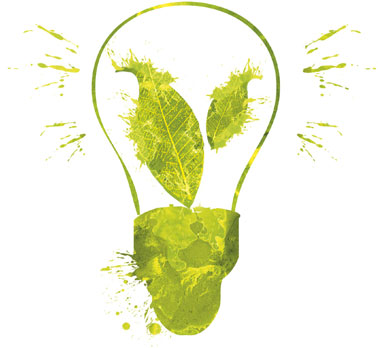 green light bulb trade cleaning products and wholesale